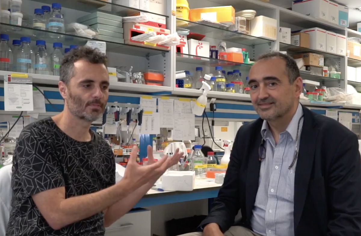Miguel Ángel Pujana presents the research of Breast Cancer Group (Oncobell)