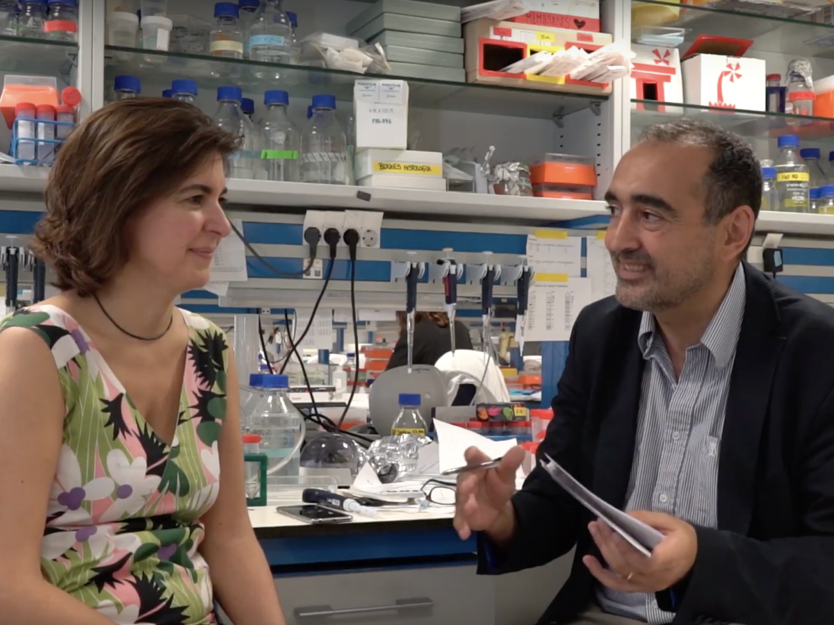 Cristina Muñoz Pinedo, leader of Cell Death Regultation Group, will chair Targeting of Signaling Pathways table